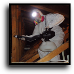 Venice, FL Attic Cleaning, Sanitizing & Insulation Services