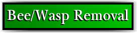 Coconut Creek, FL Bee and Wasp Removal