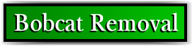Coconut Creek, FL Bobcat Removal