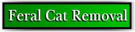 Coconut Creek, FL Feral Cat Removal