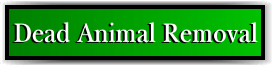 Coconut Creek, FL Dead Animal Removal