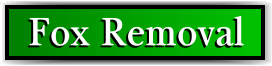 Coconut Creek, FL Fox Removal