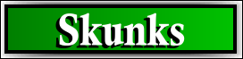 Coconut Creek, FL Skunk Removal Service