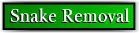 Coconut Creek, FL Snake Removal