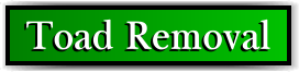 Coconut Creek, FL Toad Removal