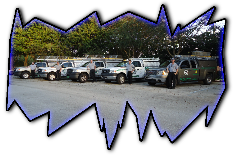 West Palm Beach, FL Wildlife Control Team