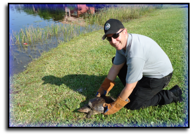 Bay Harbor Islands, FL Wildlife Control Specialist