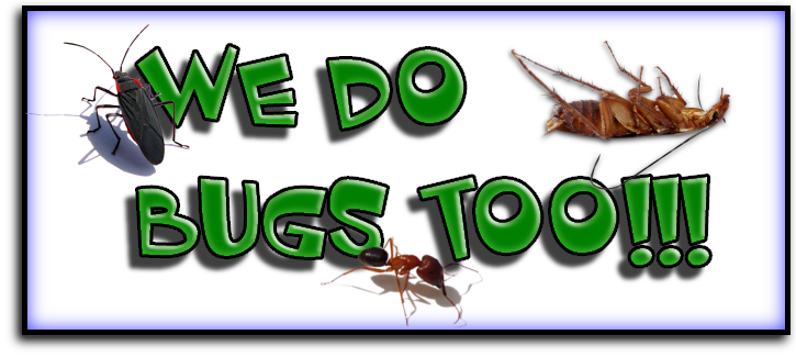 Manatee County Pest Exterminators