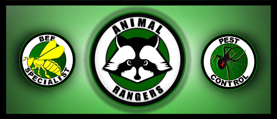 Animal Rangers - Mole Control, Trapping & Removal Services