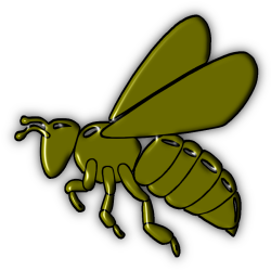 Sarasota County, FL Bee Removal Services