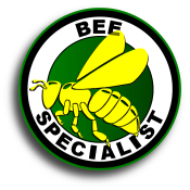 Florida Bee Removal Services