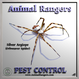 Delray Beach, FL Pest Exterminators