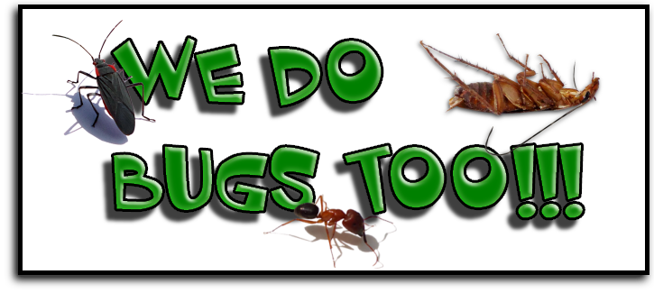 West Palm Beach, FL Pest Control Service