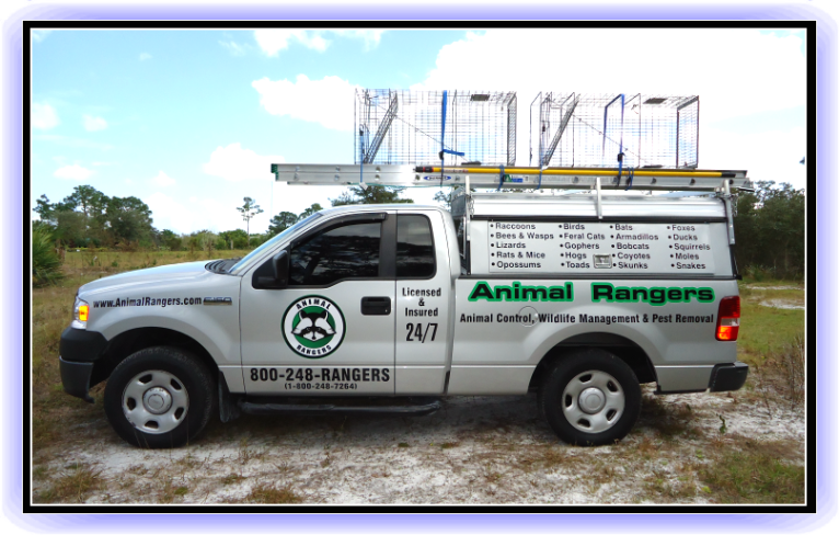 North Palm Beach, FL Animal Rangers Nuisance Wildlife Removal & Pest Control Services