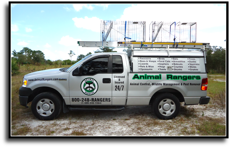 Golden Beach, FL Animal Rangers