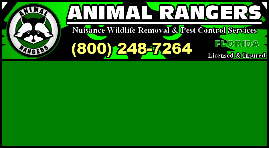 Florida - Nuisance Wildlife & Pest Control Services